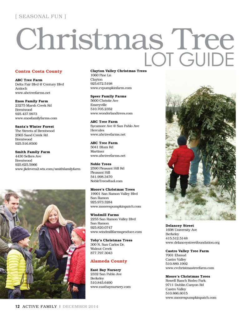 Christmas Tree Guide (1)