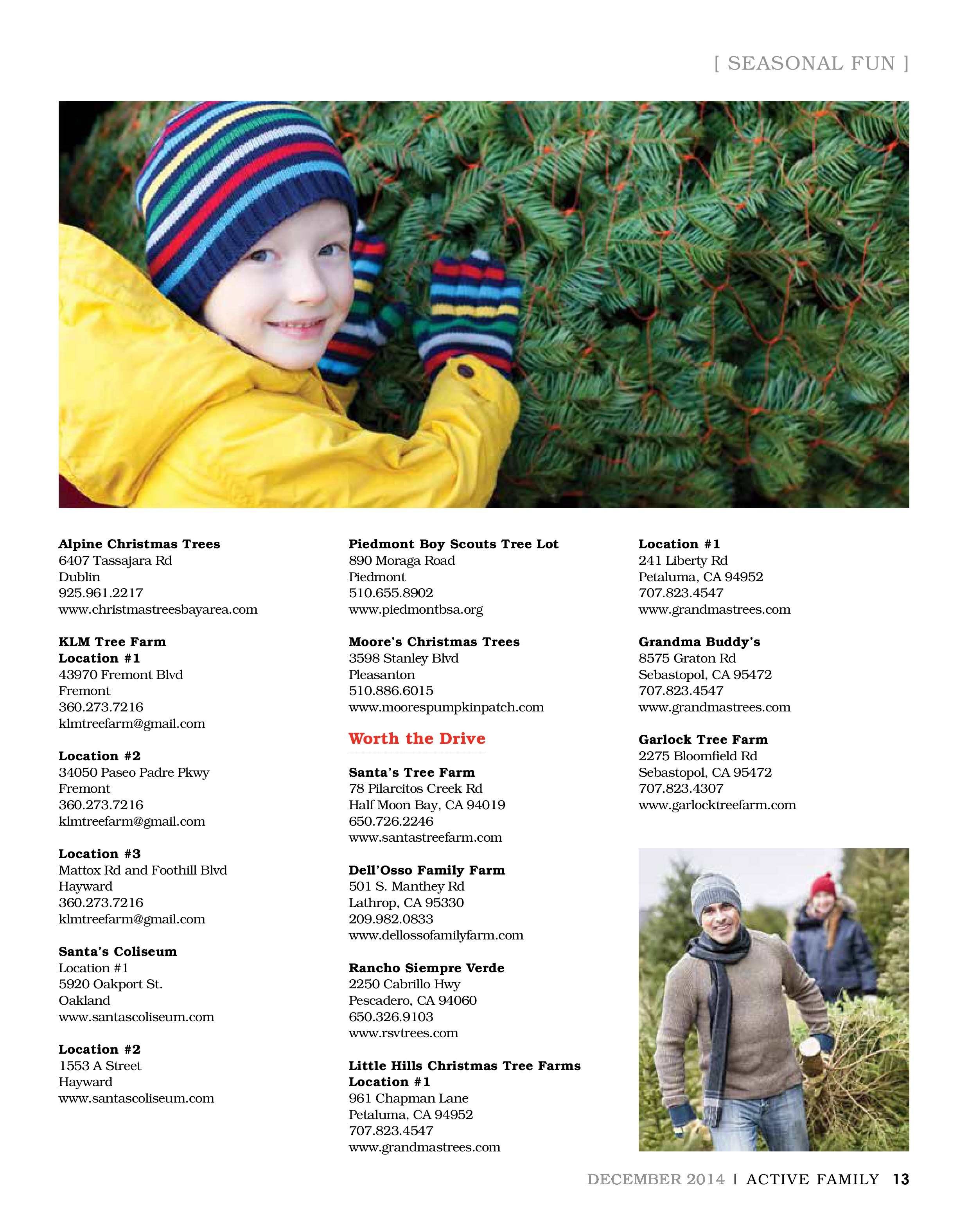 Christmas Tree Lot Guide - Active